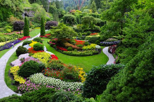 Famous Sunken Garden in Butchart Gardem, Victoria Island, Canada